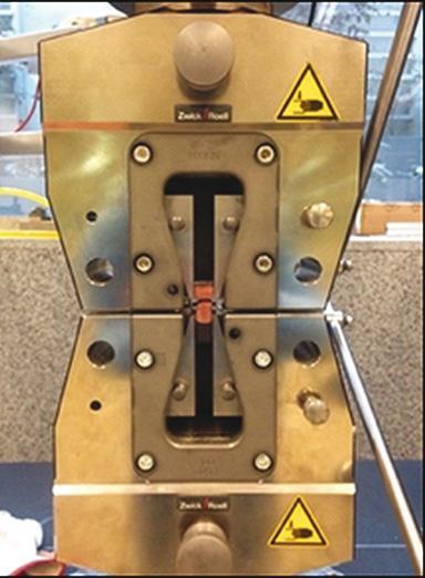 Figura 1. Diseño del experimento.